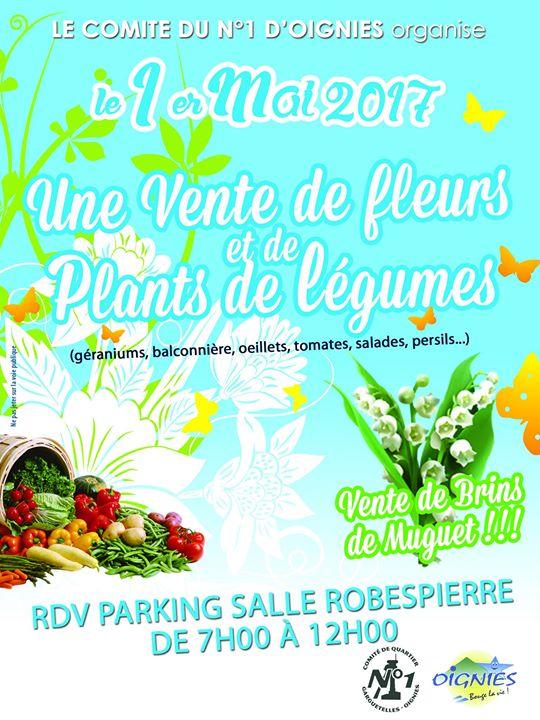 Vente De Fleurs Et Plants De Légumes Comité De Quartier N1
